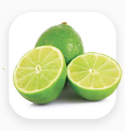 An icon for lime export