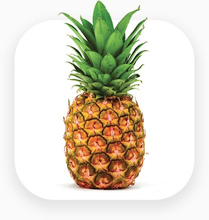 An icon for pineapple export
